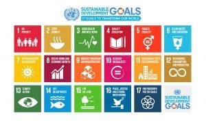 Voice&View: Sustainable Development